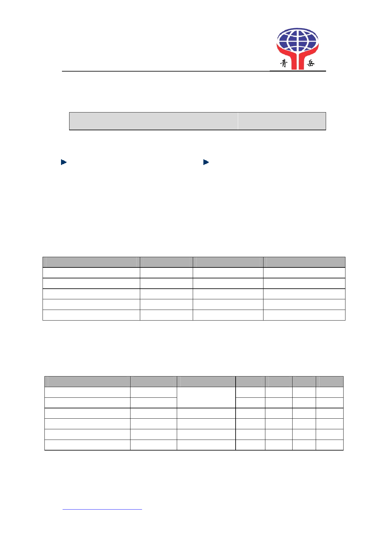 QY-S1010NP datasheet