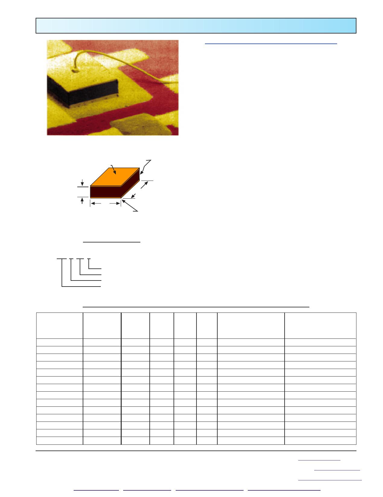 0.1K1CG2 datasheet