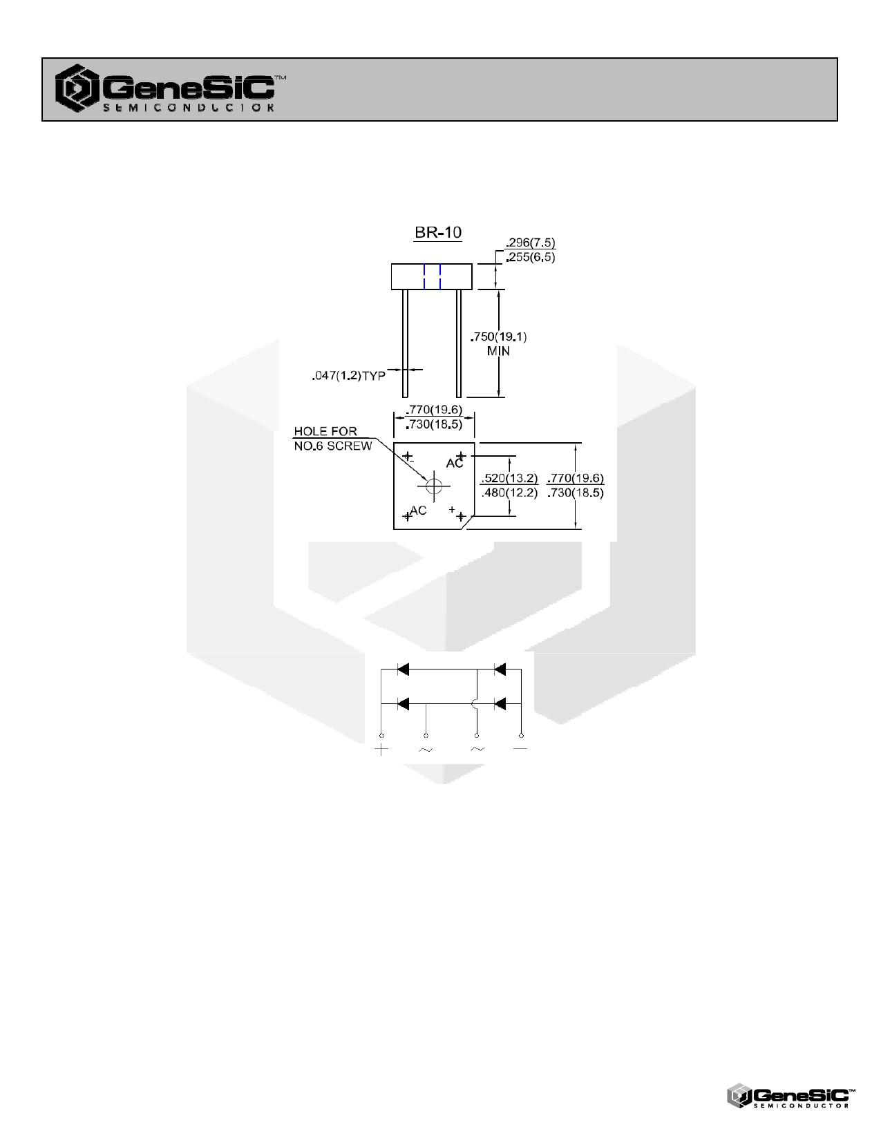 BR101 pdf, ピン配列